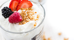 Preparation of Premixes for Yogurt and Other Cultured Milk Desserts - ZH